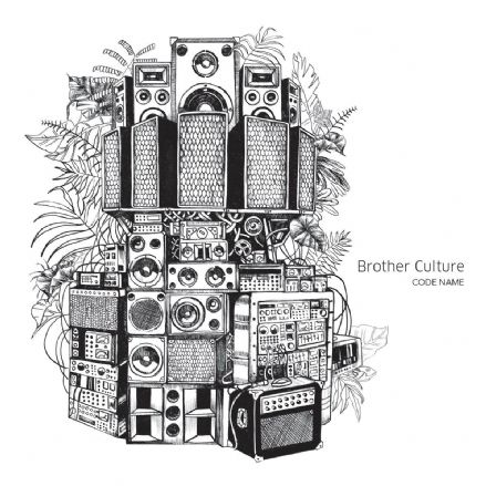 Brother Culture - Code Name (Evidence) LP
